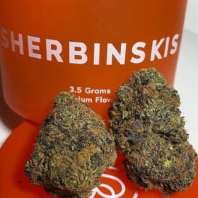 Buy Sherbinskis in Colorado