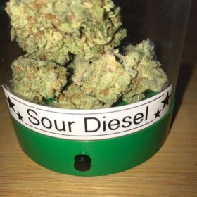 Buy Sour diesel online in New York