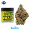 Buy Banana Lato online in Portland