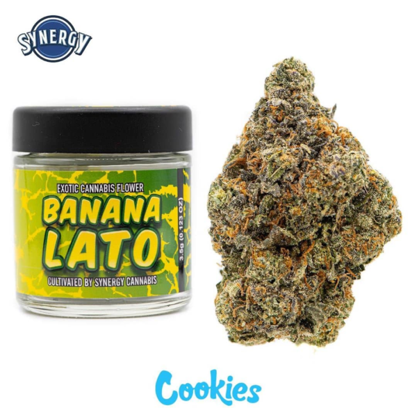 Buy Banana Lato online in Portland