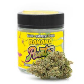 Buy Banana Runtz in Massachusetts
